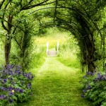 Gateway to the meadow garden