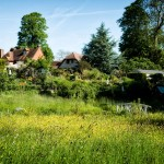 Tilford Cottage Garden from the River Wey