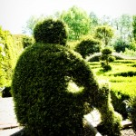 Topiary man in the knott garden