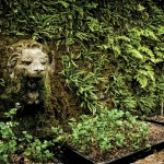 Stone lion in the glasshouse